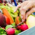 Садоводы смогут открыто продавать урожай со своего земельного участка